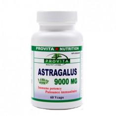 Astragalus 9000 60 cps Provita