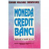 Moneda, credit, banci - Aplicatii si studii de caz