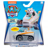 Masinuta cu figurina Paw Patrol True Metal, Everest 20127219