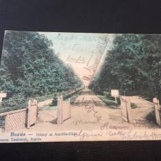 Buzias Jud: Timis 1905