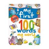 Cumpara ieftin My first 100 words, My world