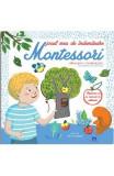 Jocul meu de indemanare Montessori - Celine Santini, Vendula Kachel