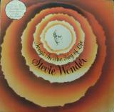 Stevie Wonder - Songs In The Key Of Life (2 LP - Germania - VG), VINIL