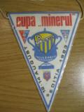 FC Baia Mare, Cupa Minerul 13-14 august 1983 - fanion