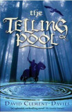 The Telling Pool - David Clement-Davies