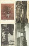 Lot 38 Carti Postale China Japonia - diverse teme - rare
