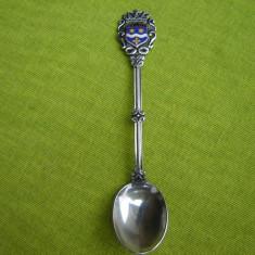 Frumoasa lingurita argintata cu blazon