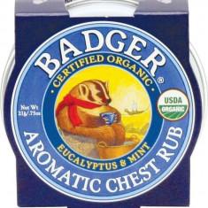 Mini balsam aromatic pt. desfundarea nasului si respiratie regulata, Chest Rub...