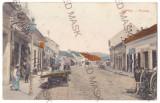 3695 - LIPOVA, Arad, Street Stores - old postcard, RED CROSS - used - 1908