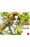 Cumpara ieftin Zdreanta