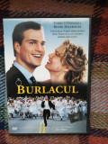 The Bachelor / Burlacul 1999 / Chris O'Donnell , Renée Zellweger, DVD, Romana