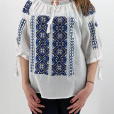 Ie Traditionala Zaraza