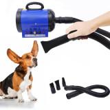Uscator par profesional pentru animale de companie, 2400 W, Albastru
