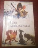 CAINII CANTONIERULUI ,ilustratii coca cretoiu, 1963
