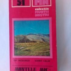 COLECTIA MUNTII NOSTRI - NR 51 - MUNTELE MIC - TARCU - 1990, cu harta