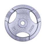 Greutate fier inSPORTline Hamerton 25 kg/31mm