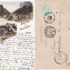 Salutari din Bucuresti - litografie  1898
