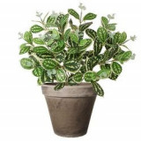 Philodendron artificial tufa bicolor H45 cm