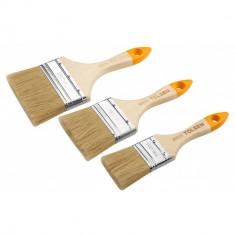 Pensule Set de 3 perii pentru zugravit cu maner din lemn Tolsen 40145