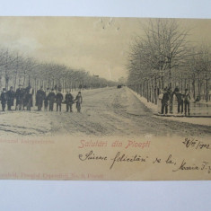 Carte postala Ploiesti-Bulevardul Independentei,circulata 1903, Printata