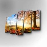 Cumpara ieftin Tablou decorativ Art Five, 747AFV1230, Multicolor