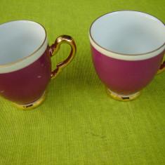 Portelan Mitterteich Bavaria, frumoase 2 cesti de cafea