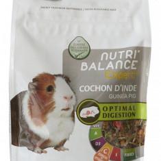 Nutri`Balance Expert - hrana completa pentru porcusori de guinea - 100218