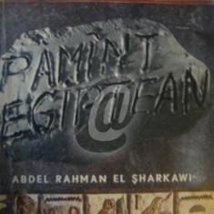 Pamant egiptean
