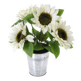 Cumpara ieftin Floarea Soarelui, Alba in ghiveci de metal, H 27 cm
