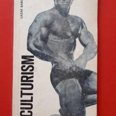 CULTURISM ×  LAZAR BOROGA