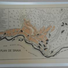 Harta Sinaia 1920, 17x24 cm, impecabila