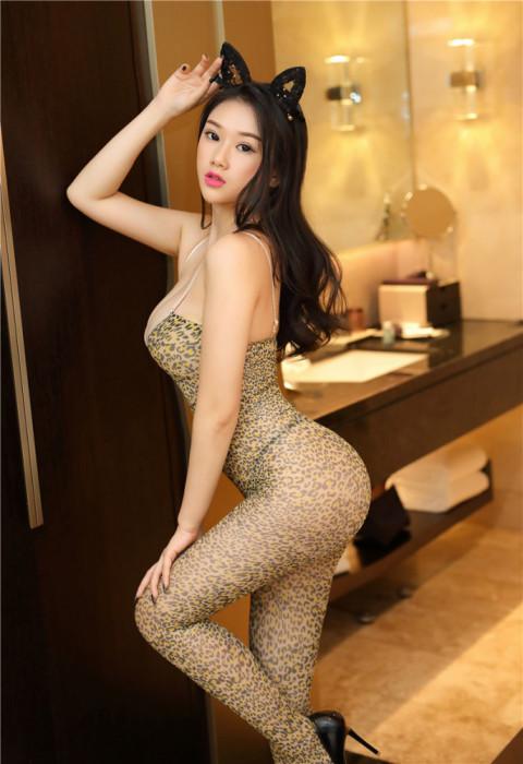 Lenjerie Lady Lust Sexy Bodystocking Fishnet Leopard Crotch Plasa Stocking