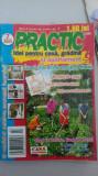 Revista PRACTIC - nr. 7/2005