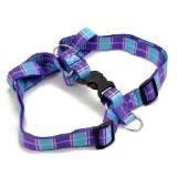 Zgardă pentru câini - albastru - violet S 1,6 x 30 - 45 cm