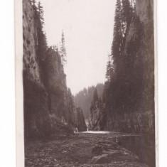 SINAIA-CHEILE TATARULUI-CARTE POSTALA ANII 30