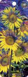 Semn de carte 3D - Sunflowers