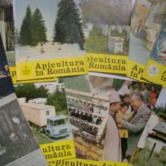 Lot Reviste Apicultura 1977