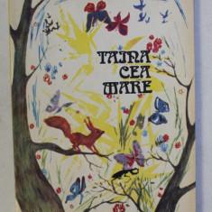 TAINA CEA MARE de MAGDALENA VAIDA , ilustratii de DUMITRU RISTEA , 1993