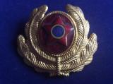 Insignă militară - Cuc / Caschetă / Emblemă / Coifură Ceremonie - Ofițeri - RPR