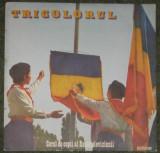 vinyl Tricolorul - Corul de copii al Radioteleviziunii disc NM-,foarte rar