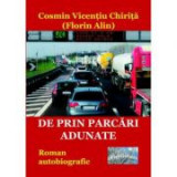 De prin parcari adunate - Cosmin Vicentiu Chirita (Florin Alin)