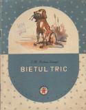 Bietul Tric - Povestiri