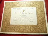 Diploma -Campion National Lupte Clasice -Gheorghe Popovici Club Dinamo1964 ,87kg