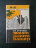 DAN GR. MIHAESCU - SLALOM PRINTRE BANUTI