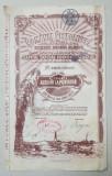 ' ROMANIA PETROLIFERA - FRATIA - SOCIETATE ANONIMA ROMANA ' - CERTIFICAT DE CINCI ACTIUNI LA PURTATOR IN VALOARE DE DOUA MII CINCI SUTE LEI , 1924