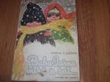 BABA IARNA INTRA-N SAT ( 1985, ilustratii color de Coca Cretoiu - Seinescu ) *