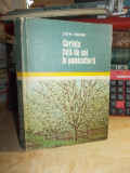 STEFAN HORNUNG - CERINTE FATA DE SOL IN POMICULTURA , 1975