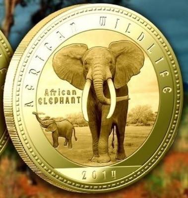 Zambia 1000 Kwacha 2014 UNC  Elefantul african  40mm Auriu foto