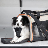 Geanta transport animale de companie - Wander - 48x28x28 cm