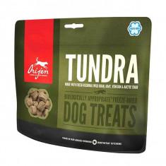 Hrană recompensă ORIJEN TREAT Tundra 92 g foto